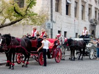 Tour by horse cab