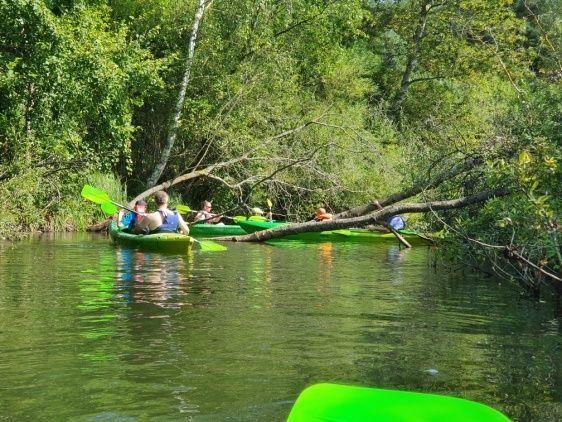 Kaykaking on the Radunia river