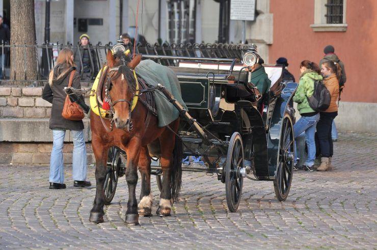 Horse cab, Warsaw, Poland