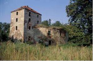 polish castle 1